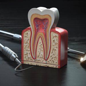 Cirugía Oral y Avanzada